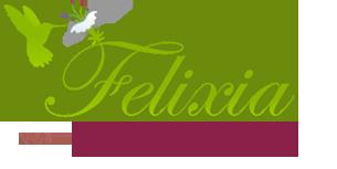 Logo de Felixia