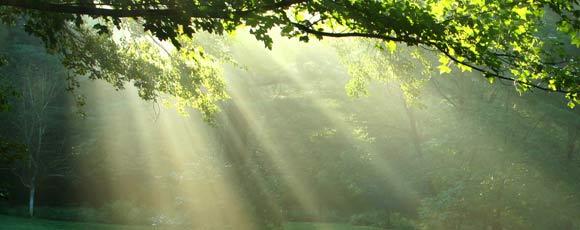 Méditation de pleine conscience par Infinite Love