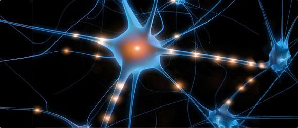 De la même façon que les neurones se connectent entre eux, nous nous connectons ensemble
