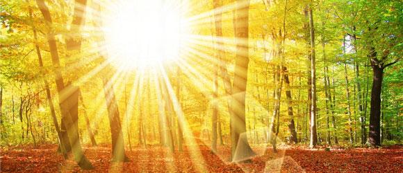 Expression divine de la vie, de la source qui vit à travers nous